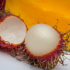 Rambutan in Front of Mango